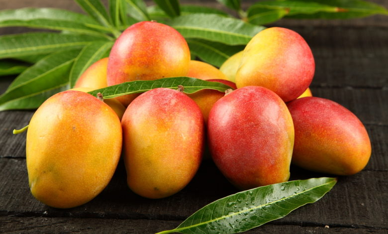 Mango nachreifen