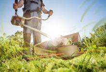 Photo of Gartengeräte: Darauf sollte man bei der Auswahl achten