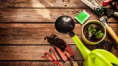 Photo of Praktische Gartengeräte: Diese Geräte erleichtern die Gartenarbeit